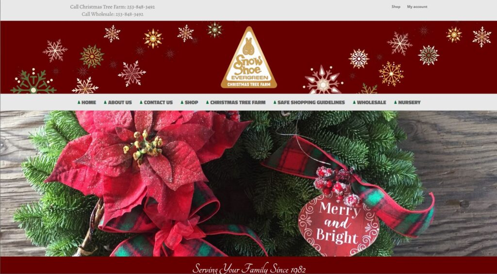 Web Design and Hosting for Snowshoe Evergreen